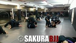 North NJ BJJ Open Workout