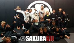 kids bjj north nj